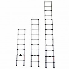 TELESCOPIC LEANING LADDER